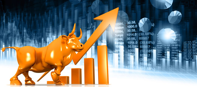 Courses in forex and treasury management