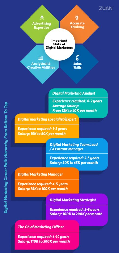 Digital Marketing Career Path Hierarchy